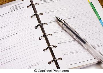 caneta, livro, programa