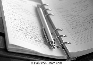 caneta, organizador