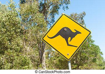 canguro, segno giallo, avvertimento, nero, riflessivo