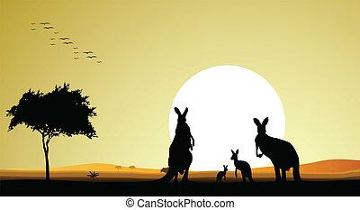 canguro, silhouette, famiglia