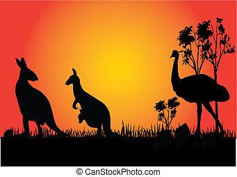 canguru, e, emu
