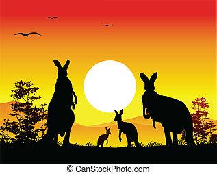 canguru, família, silueta