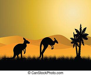 canguru, silueta, dois