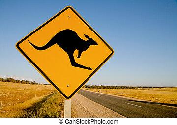 canguru, sinal aviso, austrália