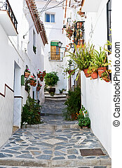Canillas de Albaida, Malaga, Spain