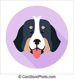 canino, cara, de, perro montaña bernese, plano, diseño