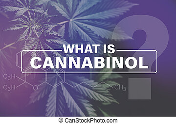 Cannabidiol CBD formula, cultivation cannabis, Growing cannabis indica, background green, CBD, marijuana leaves, marijuana vegetation plants hemp