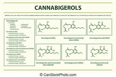 Cannabigerol CBG with Structural Formulas horizontal ...