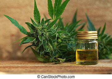 cannabis, aceite, y, cáñamo
