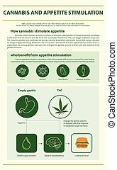 Cannabis and Appetite Stimulation vertical infographic...