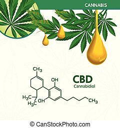 Cannabis benefits for health vector.