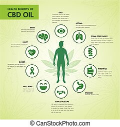 Cannabis benefits for health vector