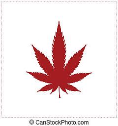 cannabis, branca, folha, isolado