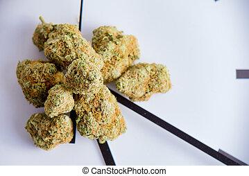 cannabis, brotes, (420, strain), encima, reloj, aislado, encima, fondo blanco