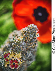 Cannabis bud in front of a poppy flower - medical marijuana for veterans theme