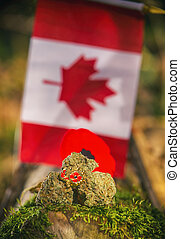 Cannabis buds in front of a Canadian flag - medical marijuana concept