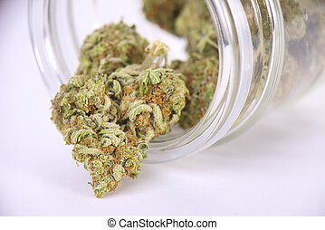 Cannabis buds (sour tangie strain) on glass jar isolated on...