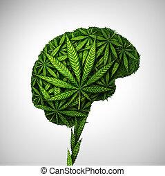 cannabis, cérebro