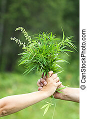 cannabis, deux, tenant mains
