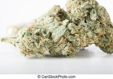 Cannabis - Dried cannabis bud
