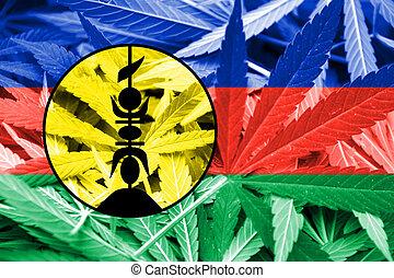 cannabis, droga de marihuana, legalization, bandera, policy...