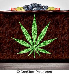 Cannabis Edibles - Cannabis edibles or marijuana edible...