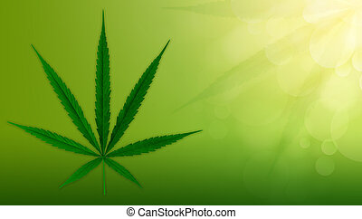 cannabis, fundo, verde, marijuana, leaves.