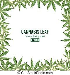 cannabis, hintergrund., vektor, marihuana, frame., grünes blatt
