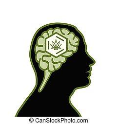 cannabis, homme