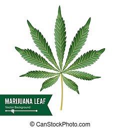 cannabis, ikone, vector., medizin, grünpflanze, abbildung, freigestellt, weiß, hintergrund., graphischer entwurf, element, für, printables, web, drucke, t-shirt.