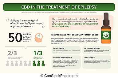 Cannabis in the Treatment of Epilepsy horizontal textbook infographic