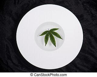 Cannabis leaf floating on a white dish - medical marijuana ...