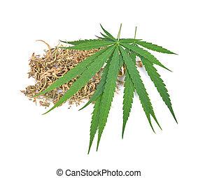 Cannabis leaf, marijuana leaf on white background