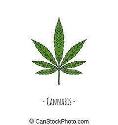 Cannabis leaf. Vector cartoon illustration. Isolated object on white.