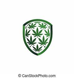 cannabis leaf with shield vector