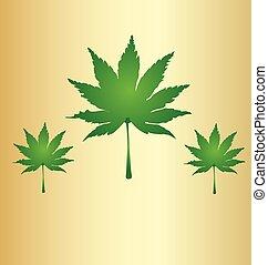 Cannabis leafs marijuana background