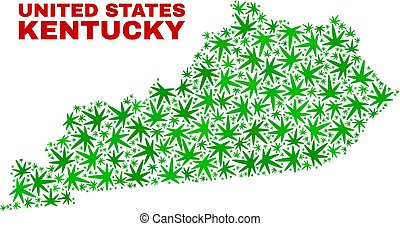 Vector marijuana Kentucky State map collage. Concept with green weed leaves for marijuana legalize campaign. Vector Kentucky State map is constructed with weed leaves.