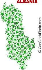 Cannabis Leaves Mosaic Albania Map