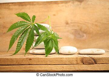 cannabis, médico, óleo, marijuana, cbd