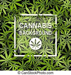 Cannabis marijuana leaves background with white frame