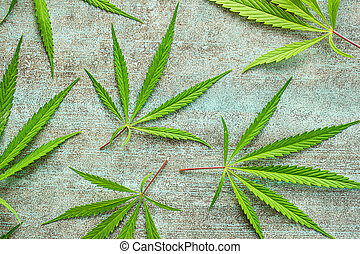 cannabis, marijuana, leaves.