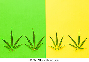 cannabis, marijuana, leaves.