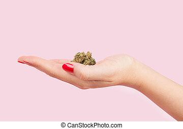 cannabis, mulher, bud., segurando