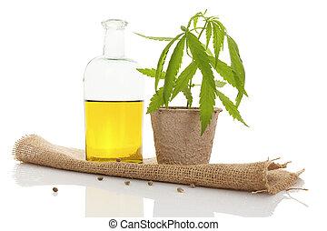 Cannabis oil.