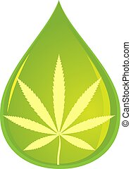 CBD oil - Cannabis plant leaf in a drop representing CBD oil...