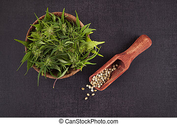 Cannabis seeds and bud. - Cannabis seeds and bud on black ...