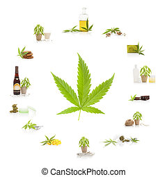 Cannabis. - Cannabis and its usage. Marijuana leaf and...