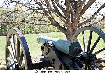 Cannon by Tree in Field