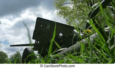 Cannon in the Grass - A cannon in a sunny peacefull day with...