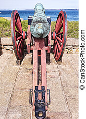 Cannon Rear View